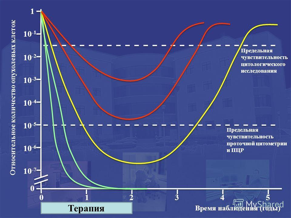 Предельная чувствительность цитологического исследования Предельная чувствительность проточной цитометрии и ПЦР 0 0 12345 1 10 -1 10 -2 10 -3 10 -4 10 -5 10 -6 10 -7 Терапия Время наблюдения (годы) Относительное количество опухолевых клеток