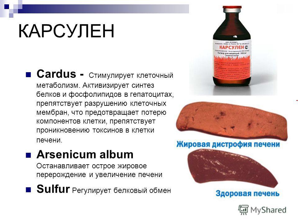КАРСУЛЕН Cardus - Стимулирует клеточный метаболизм. Активизирует синтез белков и фосфолипидов в гепатоцитах, препятствует разрушению клеточных мембран, что предотвращает потерю компонентов клетки, препятствует проникновению токсинов в клетки печени.