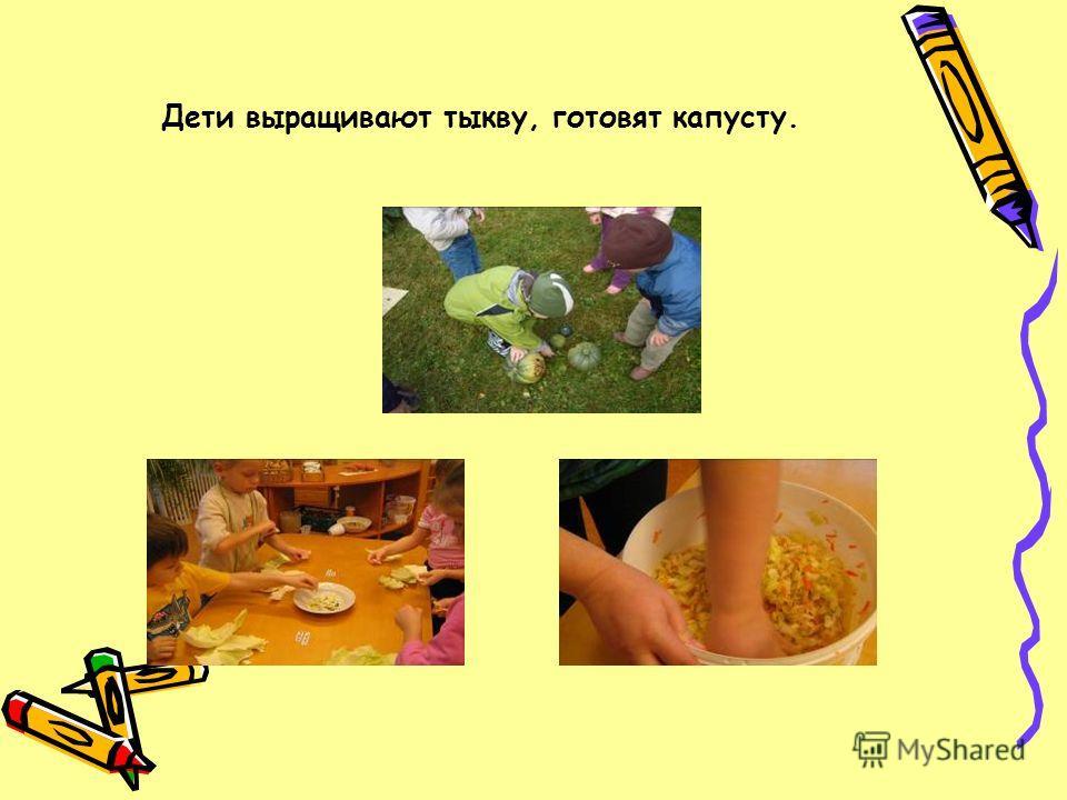 Дети выращивают тыкву, готовят капусту.