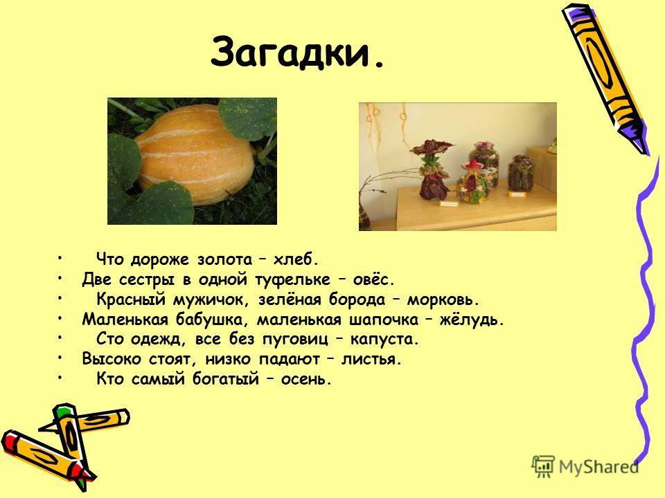 Загадки. Что дороже золота – хлеб. Две сестры в одной туфельке – овёс. Красный мужичок, зелёная борода – морковь. Маленькая бабушка, маленькая шапочка – жёлудь. Сто одежд, все без пуговиц – капуста. Высоко стоят, низко падают – листья. Кто самый бога