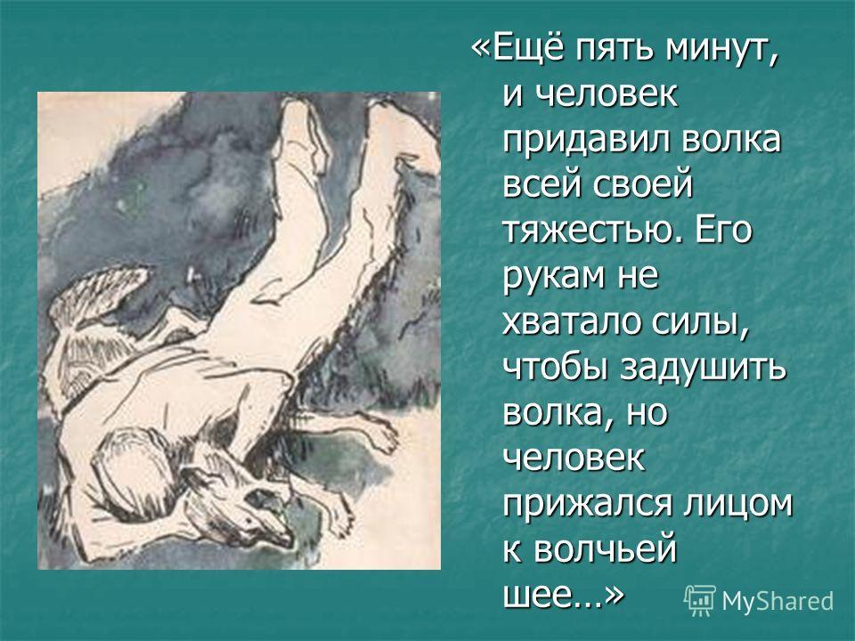 «Ещё пять минут, и человек придавил волка всей своей тяжестью. Его рукам не хватало силы, чтобы задушить волка, но человек прижался лицом к волчьей шее…»