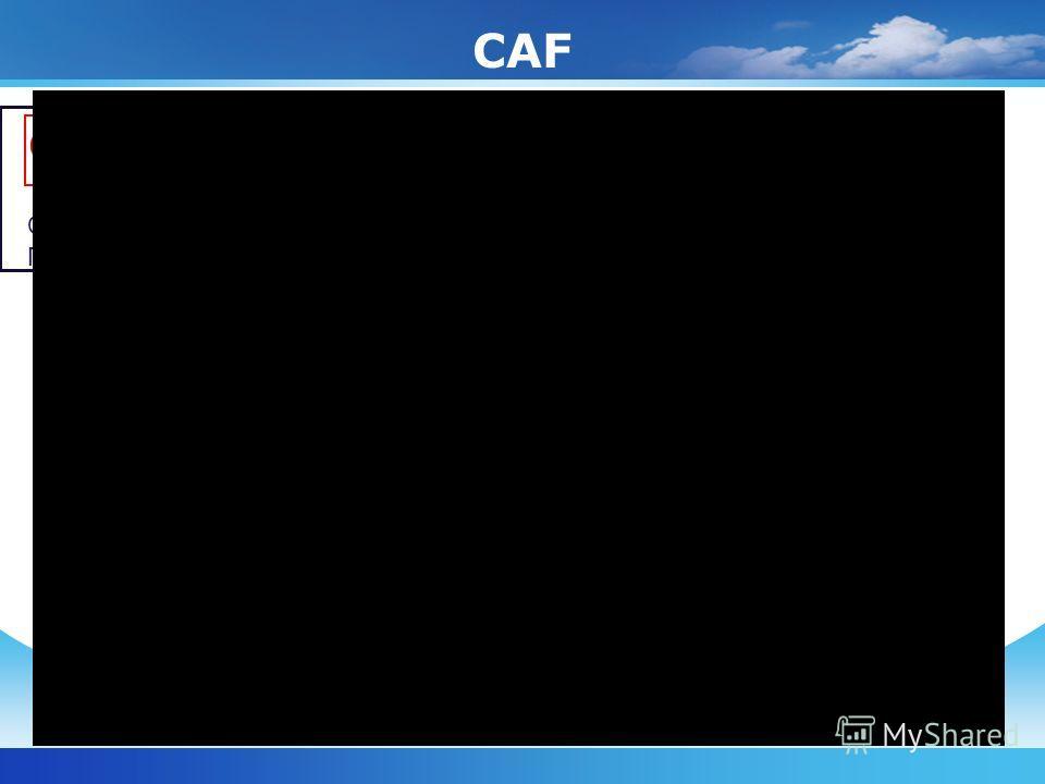 CAF Страна Басков Г.Беасайн