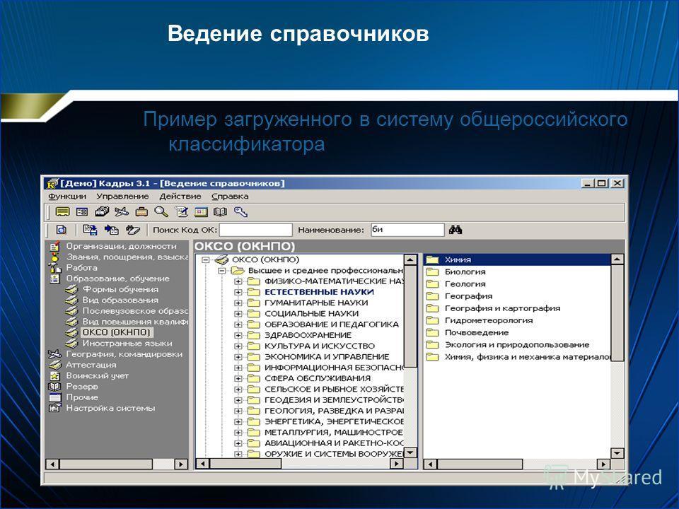 Ведение справочников Пример загруженного в систему общероссийского классификатора