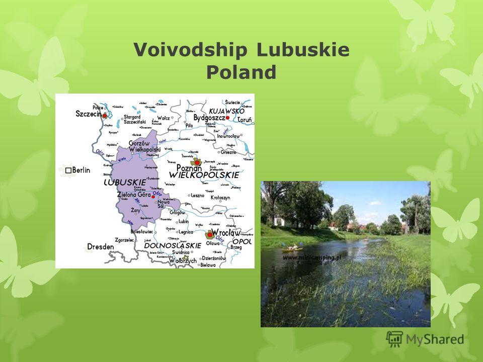 Voivodship Lubuskie Poland