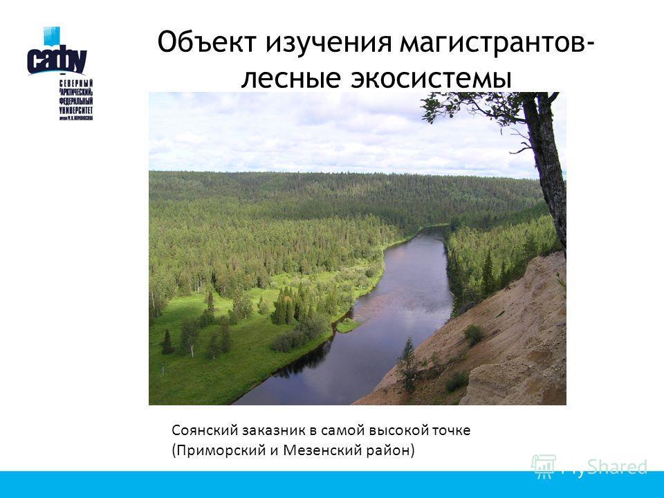 Объект изучения магистрантов- лесные экосистемы Соянский заказник в самой высокой точке (Приморский и Мезенский район)