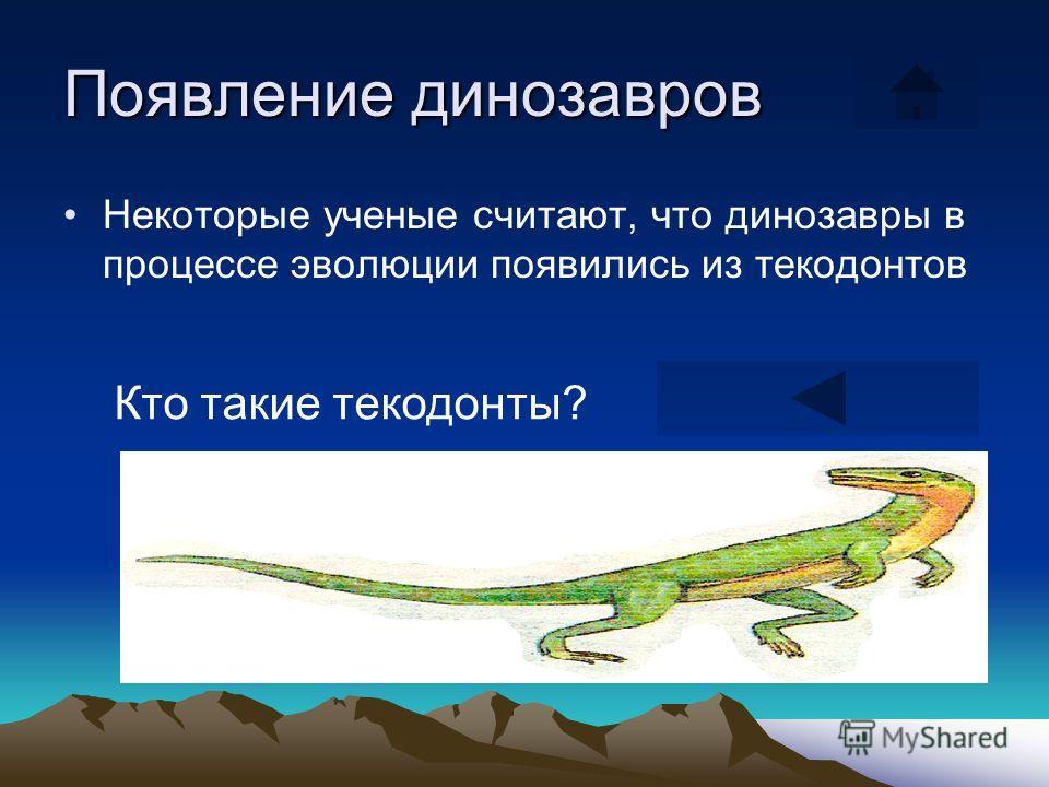 Появление динозавров Некоторые ученые считают, что динозавры в процессе эволюции появились из текодонтов Кто такие текодонты?