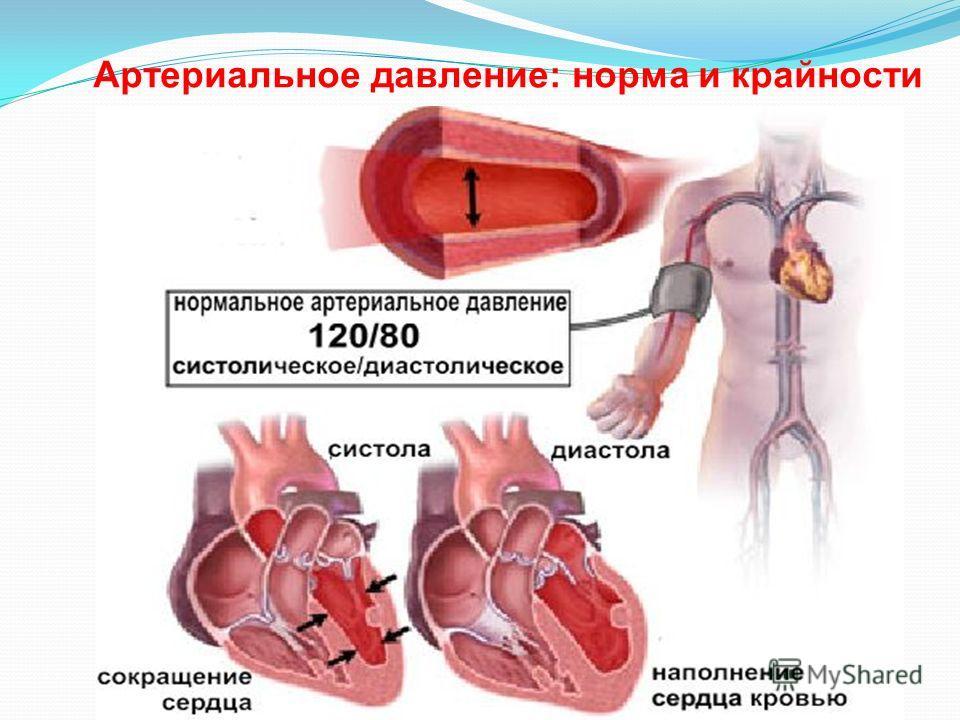 Пониженное давление артериальное и сердечное