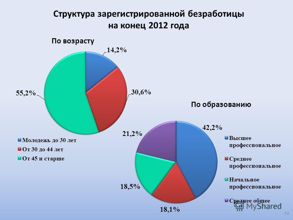 Структура зарегистрированной безработицы на конец 2012 года 14