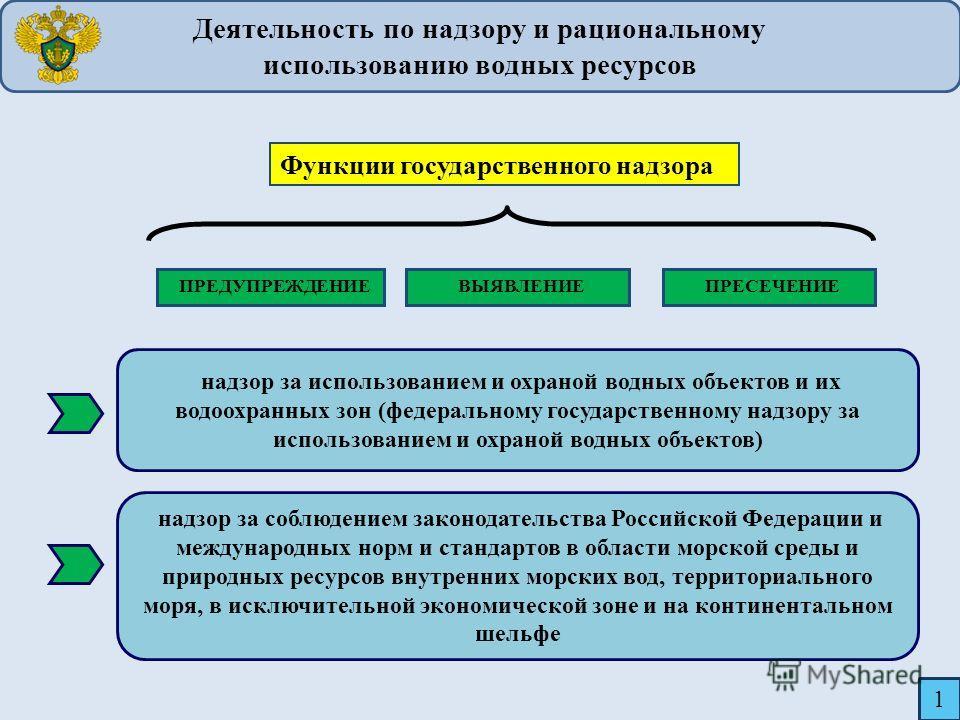 надзор за использованием и охраной водных объектов и их водоохранных зон (федеральному государственному надзору за использованием и охраной водных объектов) надзор за соблюдением законодательства Российской Федерации и международных норм и стандартов