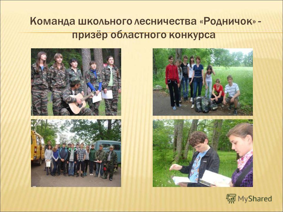 Команда школьного лесничества «Родничок» - призёр областного конкурса