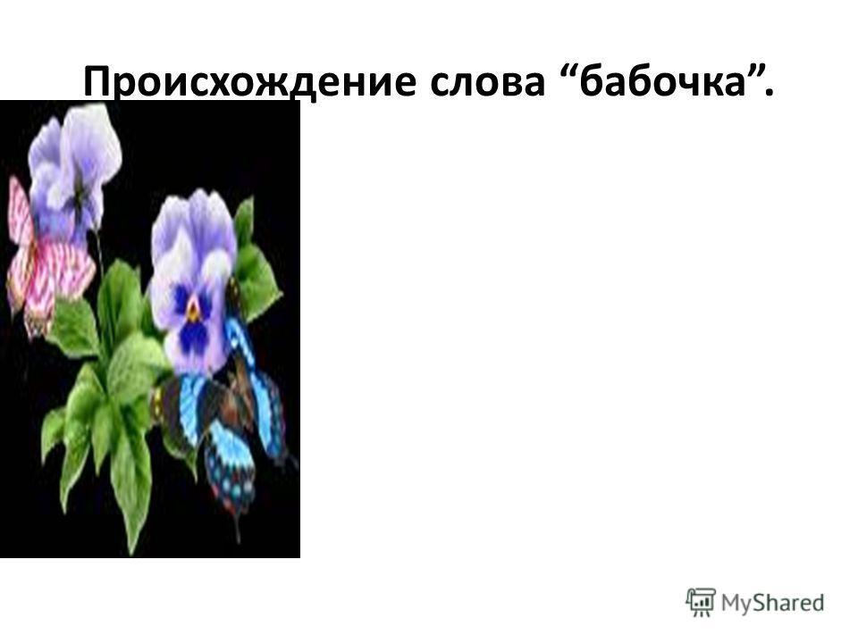 Происхождение слова бабочка.