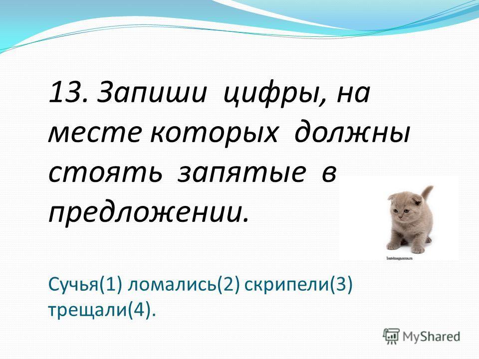 13. Запиши цифры, на месте которых должны стоять запятые в предложении. Сучья(1) ломались(2) скрипели(3) трещали(4).