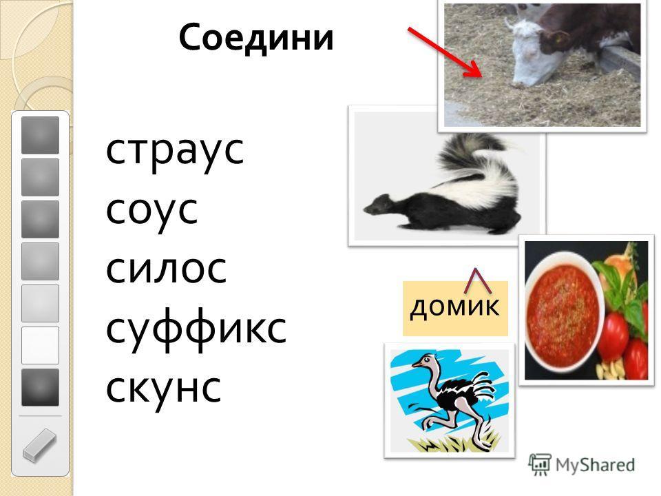 Соедини страус соус силос суффикс скунс домик