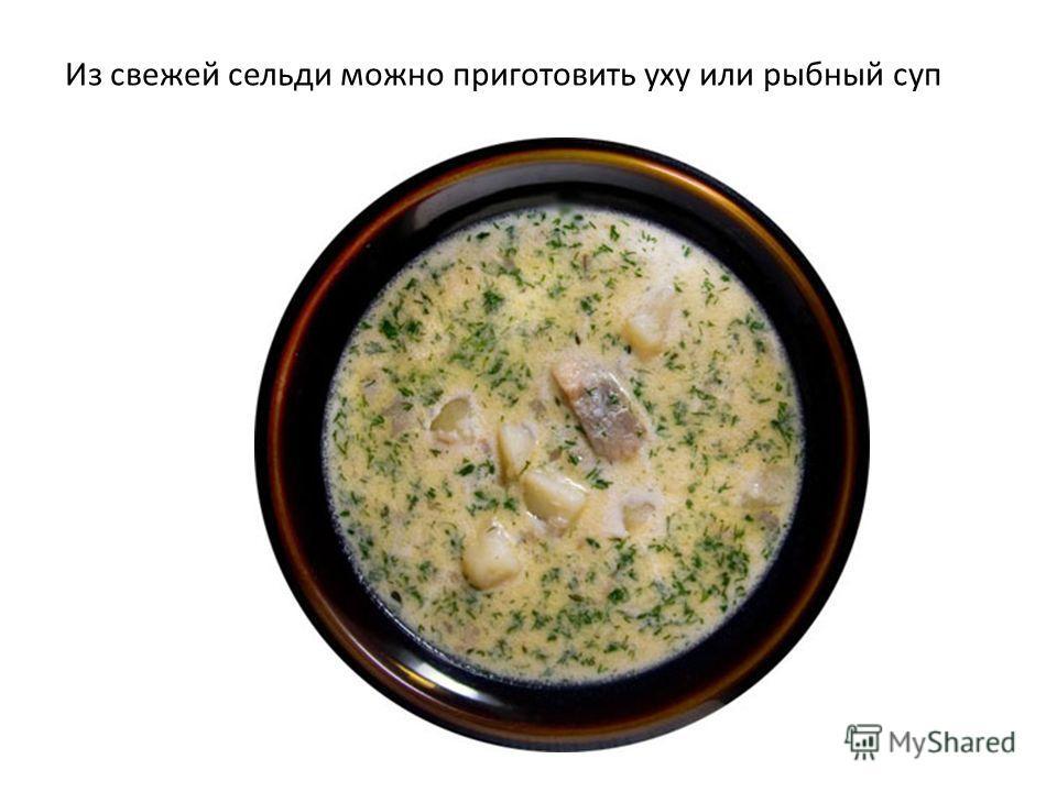 Из свежей сельди можно приготовить уху или рыбный суп