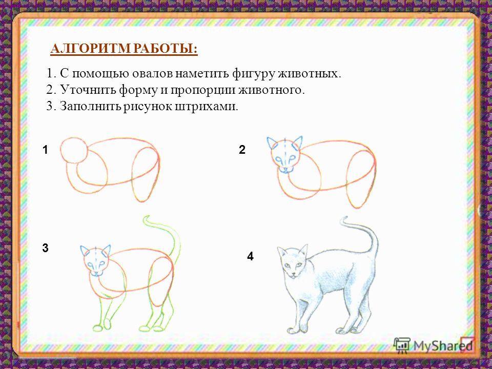 АЛГОРИТМ РАБОТЫ: 1. С помощью овалов наметить фигуру животных. 2. Уточнить форму и пропорции животного. 3. Заполнить рисунок штрихами. 12 3 4