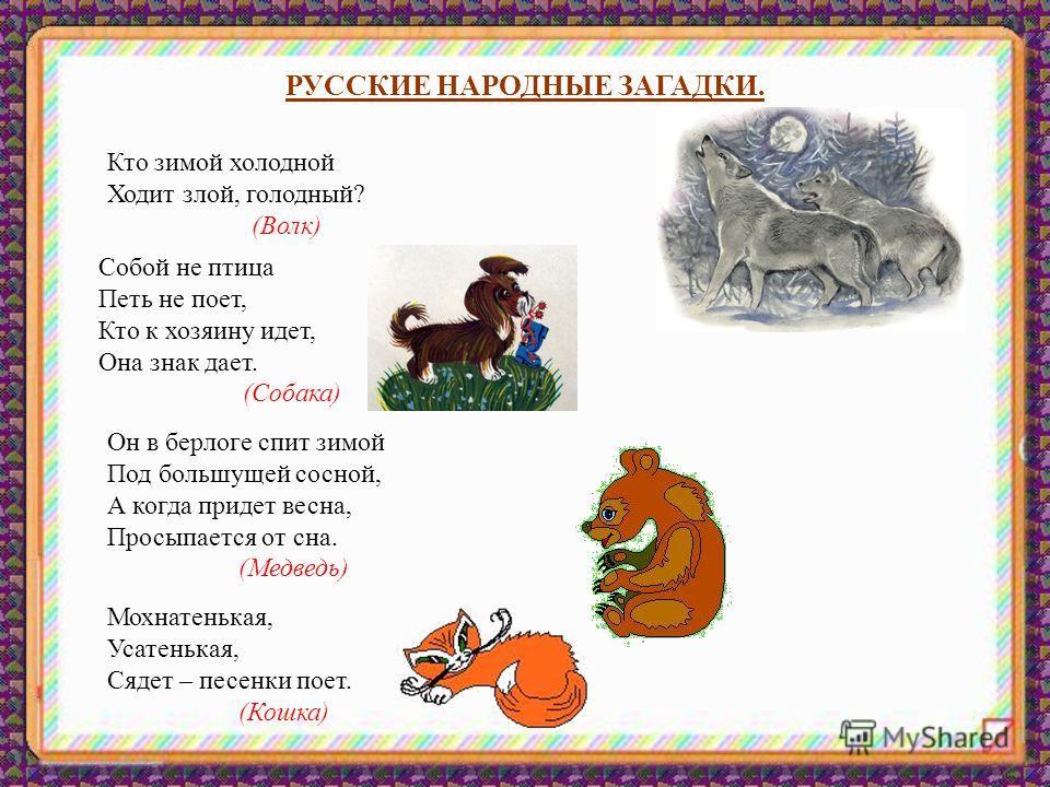 РУССКИЕ НАРОДНЫЕ ЗАГАДКИ. Кто зимой холодной Ходит злой, голодный? (Волк) Собой не птица Петь не поет, Кто к хозяину идет, Она знак дает. (Собака) Он в берлоге спит зимой Под большущей сосной, А когда придет весна, Просыпается от сна. (Медведь) Мохна