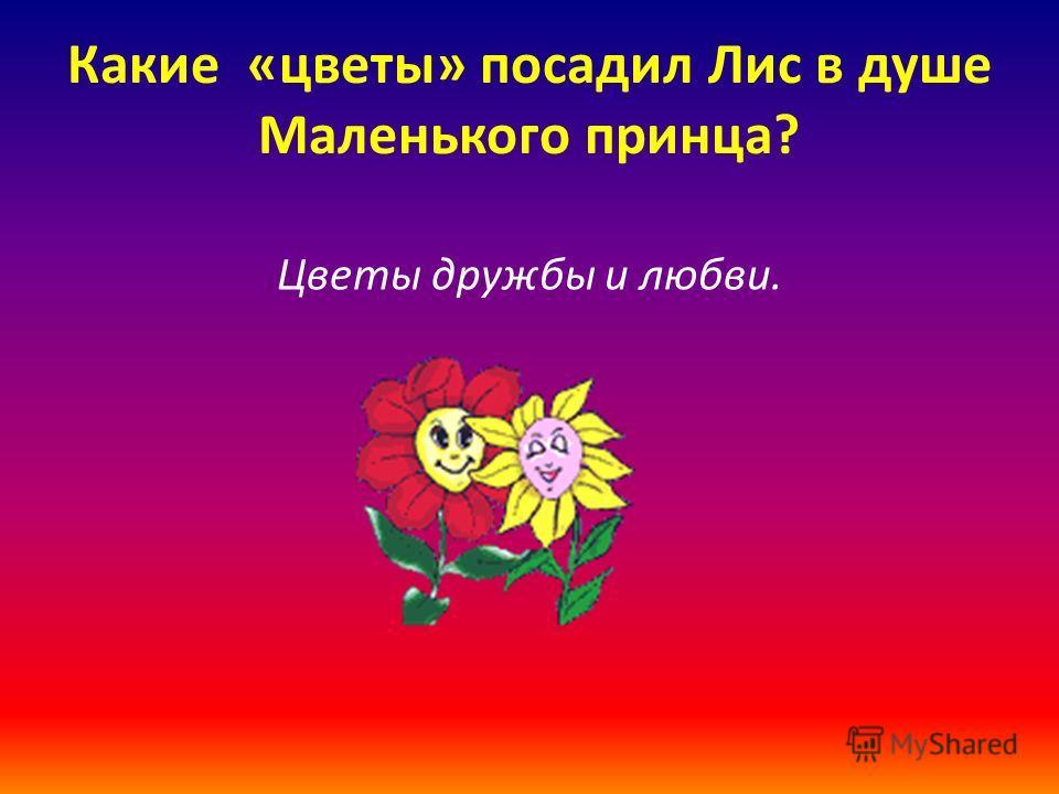 Какие «цветы» посадил Лис в душе Маленького принца? Цветы дружбы и любви.