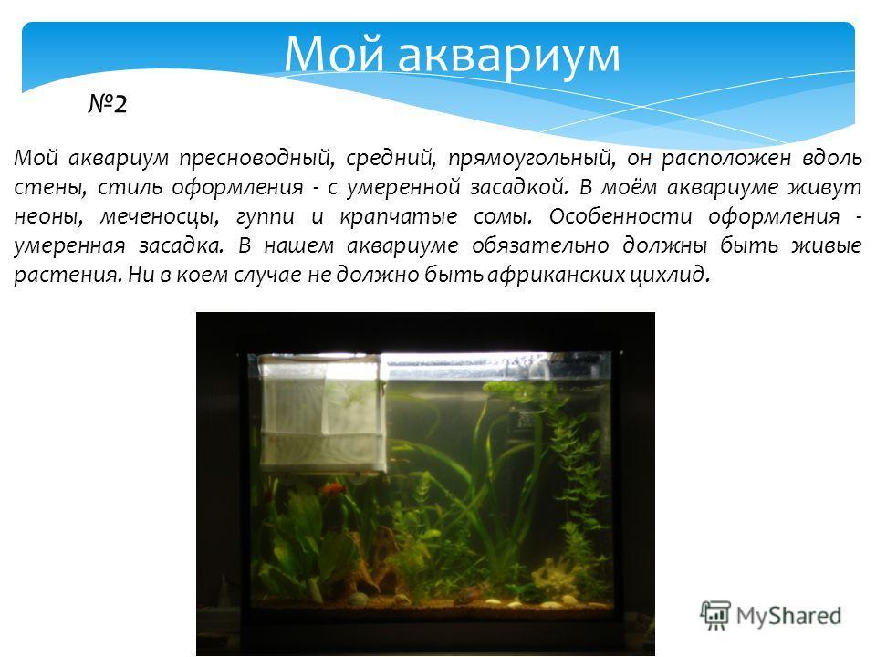 2 Мой аквариум пресноводный, средний, прямоугольный, он расположен вдоль стены, стиль оформления - с умеренной засадкой. В моём аквариуме живут неоны, меченосцы, гуппи и крапчатые сомы. Особенности оформления - умеренная засадка. В нашем аквариуме об