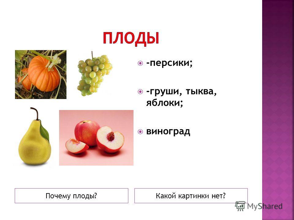 Почему плоды?Какой картинки нет? -персики; -груши, тыква, яблоки; виноград