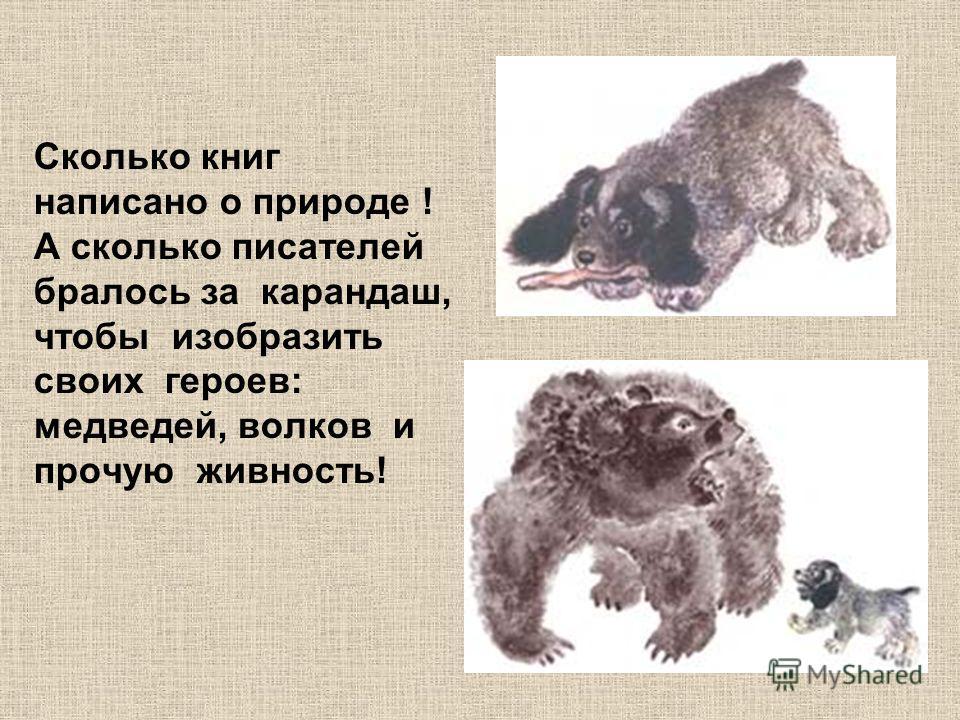 Сколько книг написано о природе ! А сколько писателей бралось за карандаш, чтобы изобразить своих героев: медведей, волков и прочую живность!
