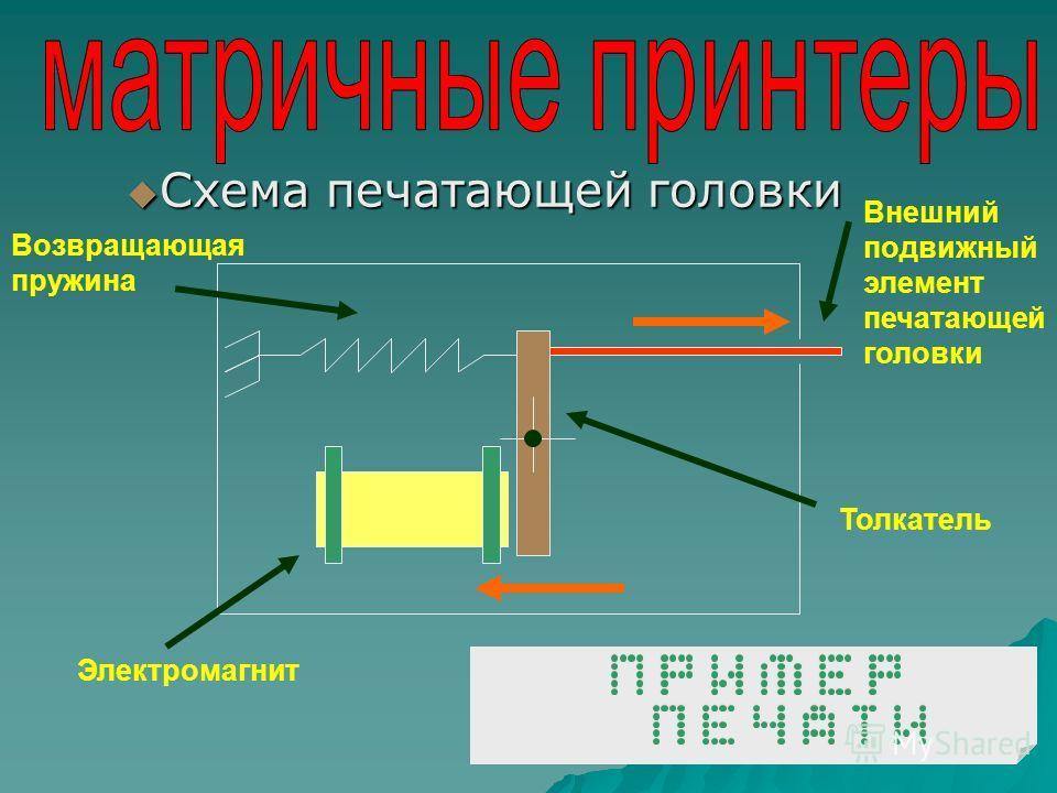 Принцип печати Печатающая головка бумага Бумагоопорный валик Красящая лента