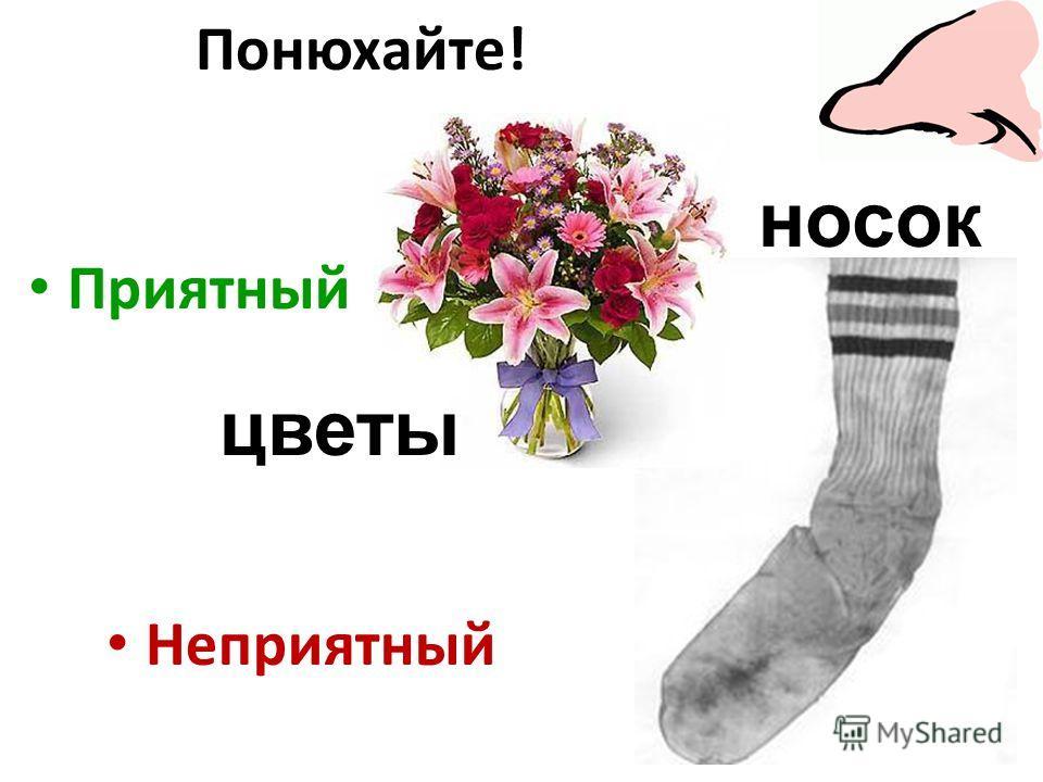 Приятный Неприятный цветы носок