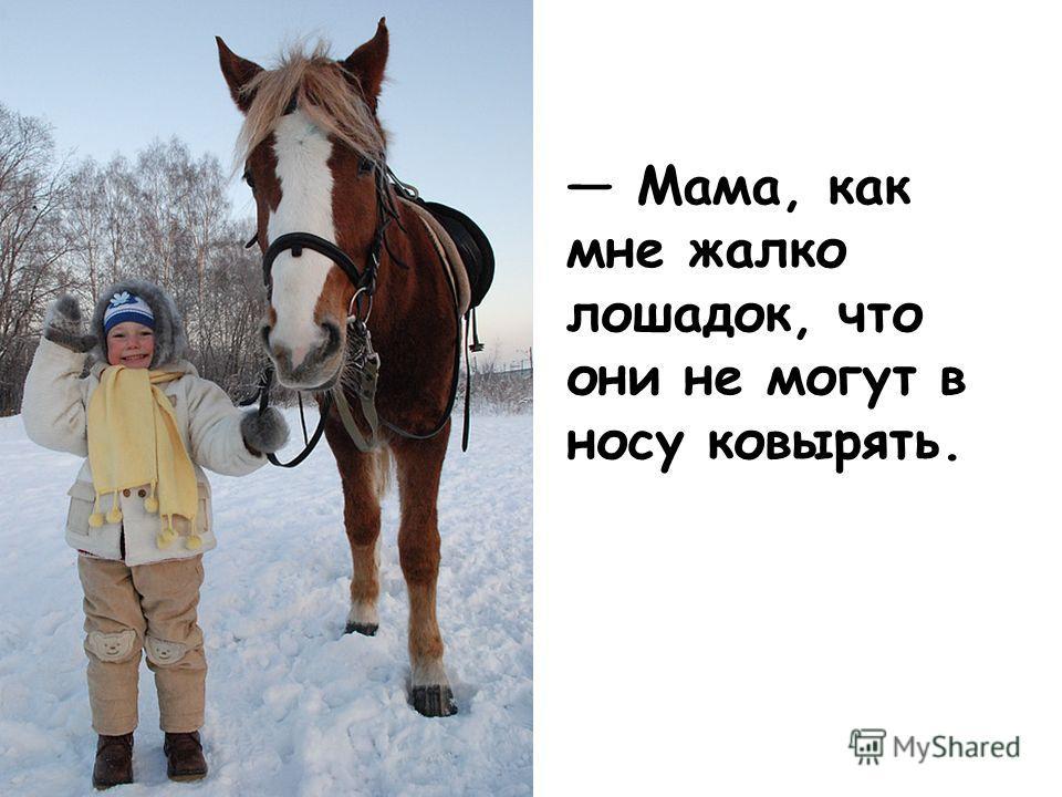 Мама, как мне жалко лошадок, что они не могут в носу ковырять.