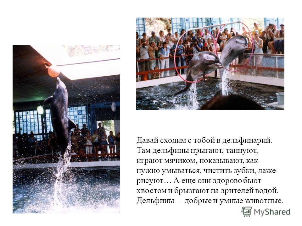 МОРСКАЯ СВИНЬЯ А это – морская свинья. Самый маленький черноморский дельфин. Морская свинья а это – морская свинья. Самый маленький черноморский дельфин.