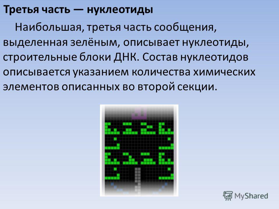 Третья часть нуклеотиды Наибольшая, третья часть сообщения, выделенная зелёным, описывает нуклеотиды, строительные блоки ДНК. Состав нуклеотидов описывается указанием количества химических элементов описанных во второй секции.