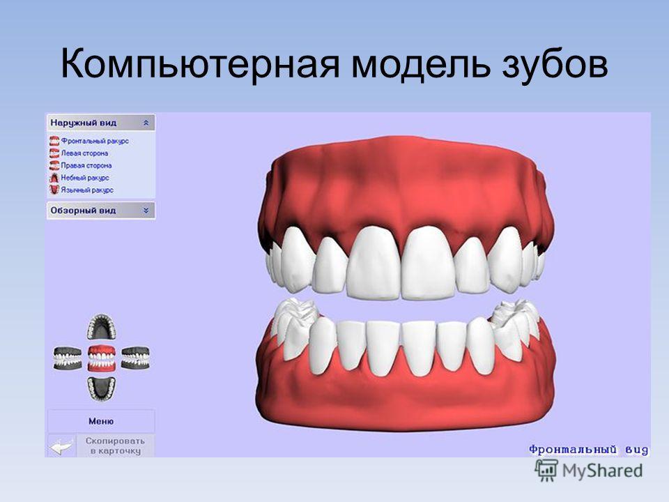 Компьютерная модель зубов