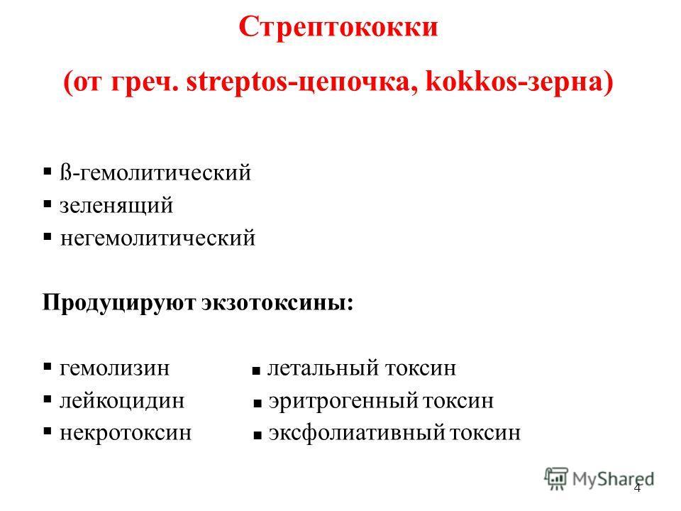 4 Стрептококки (от греч. streptos-цепочка, kokkos-зерна) ß-гемолитический зеленящий негемолитический Продуцируют экзотоксины: гемолизин летальный токсин лейкоцидин эритрогенный токсин некротоксин эксфолиативный токсин