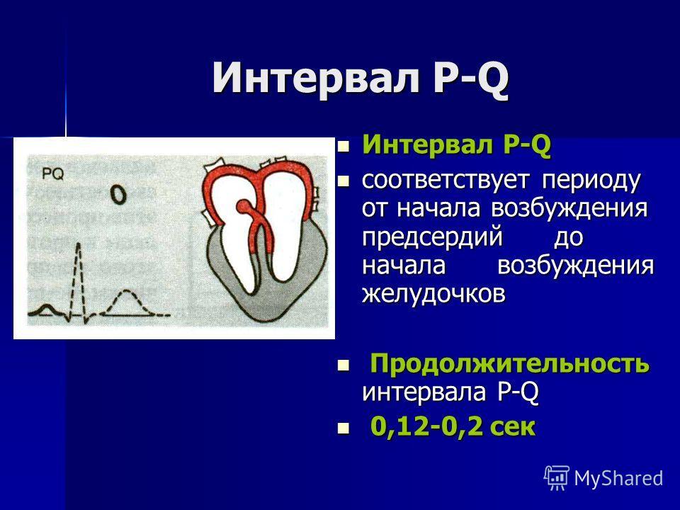 Интервал Р-Q Интервал Р-Q Интервал Р-Q соответствует периоду от начала возбуждения предсердий до начала возбуждения желудочков соответствует периоду от начала возбуждения предсердий до начала возбуждения желудочков Продолжительность интервала Р-Q Про
