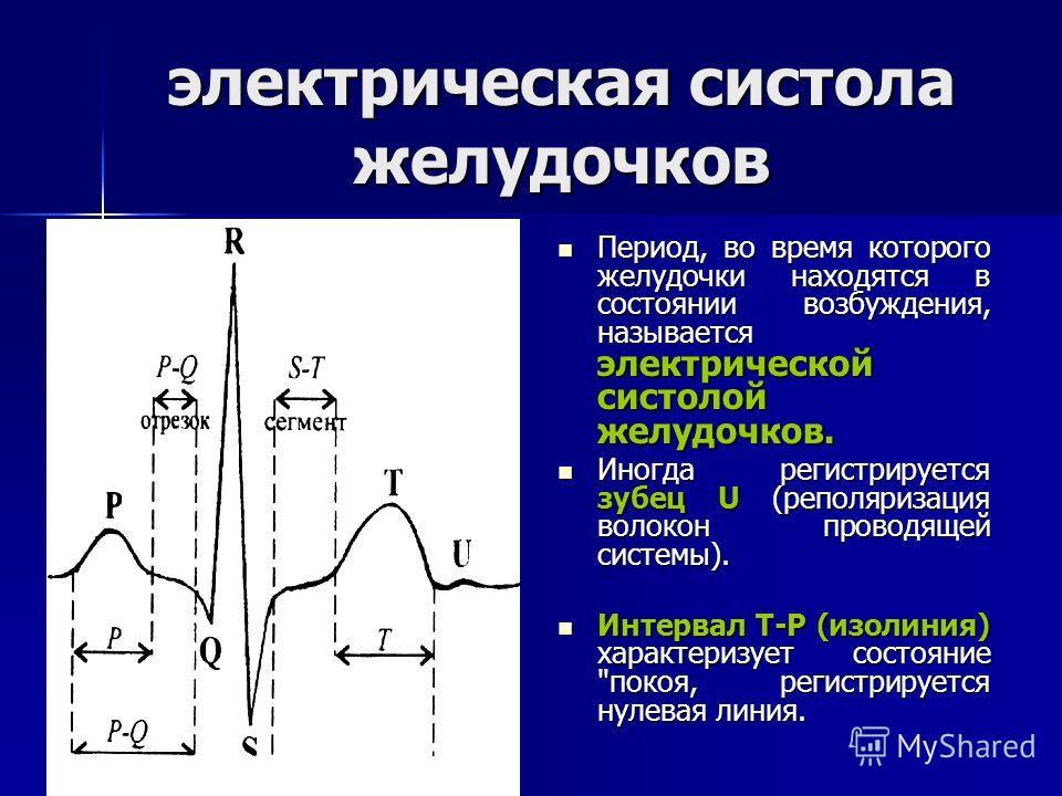 электрическая систола желудочков Период, во время которого желудочки находятся в состоянии возбуждения, называется электрической систолой желудочков. Период, во время которого желудочки находятся в состоянии возбуждения, называется электрической сист