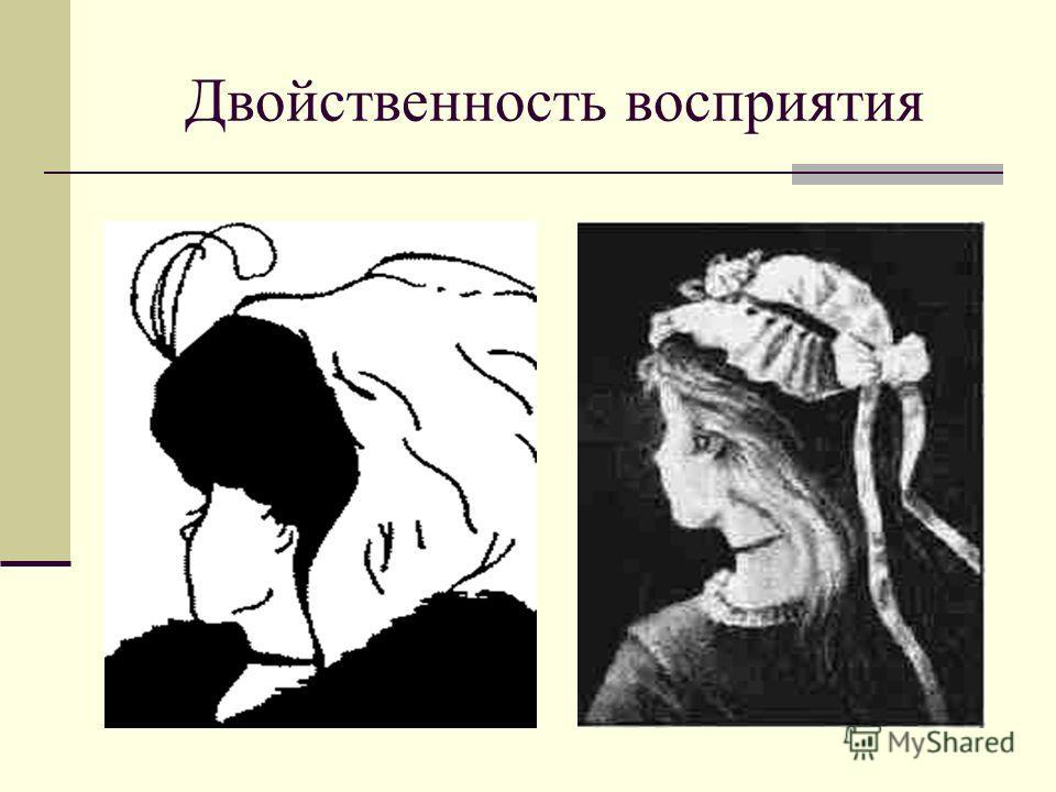 Двойственность восприятия