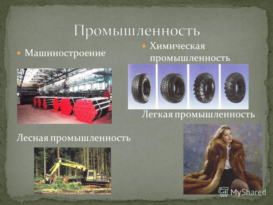 Машиностроение Лесная промышленность Химическая промышленность Легкая промышленность
