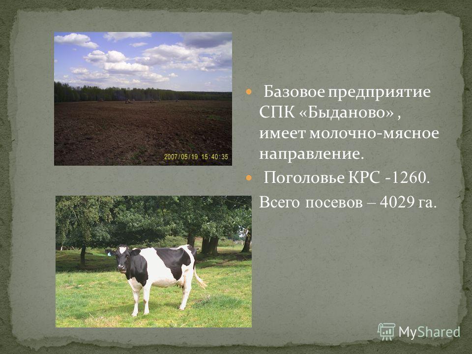 Базовое предприятие СПК «Быданово», имеет молочно-мясное направление. Поголовье КРС - 1260. Всего посевов – 4029 га.