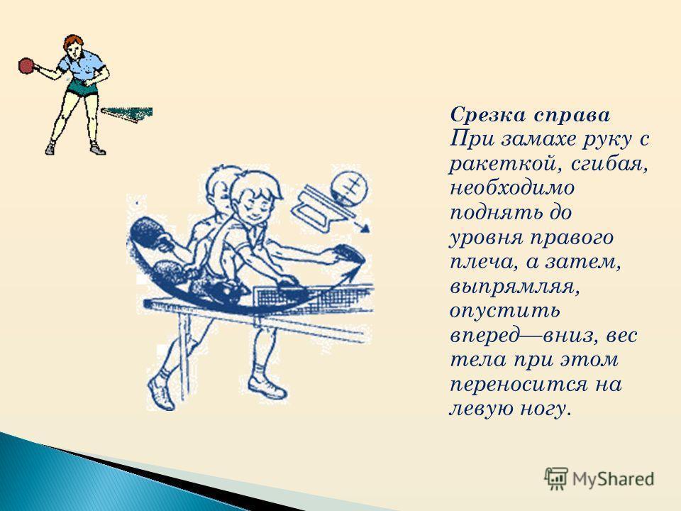 Срезка справа При замахе руку с ракеткой, сгибая, необходимо поднять до уровня правого плеча, а затем, выпрямляя, опустить впередвниз, вес тела при этом переносится на левую ногу.