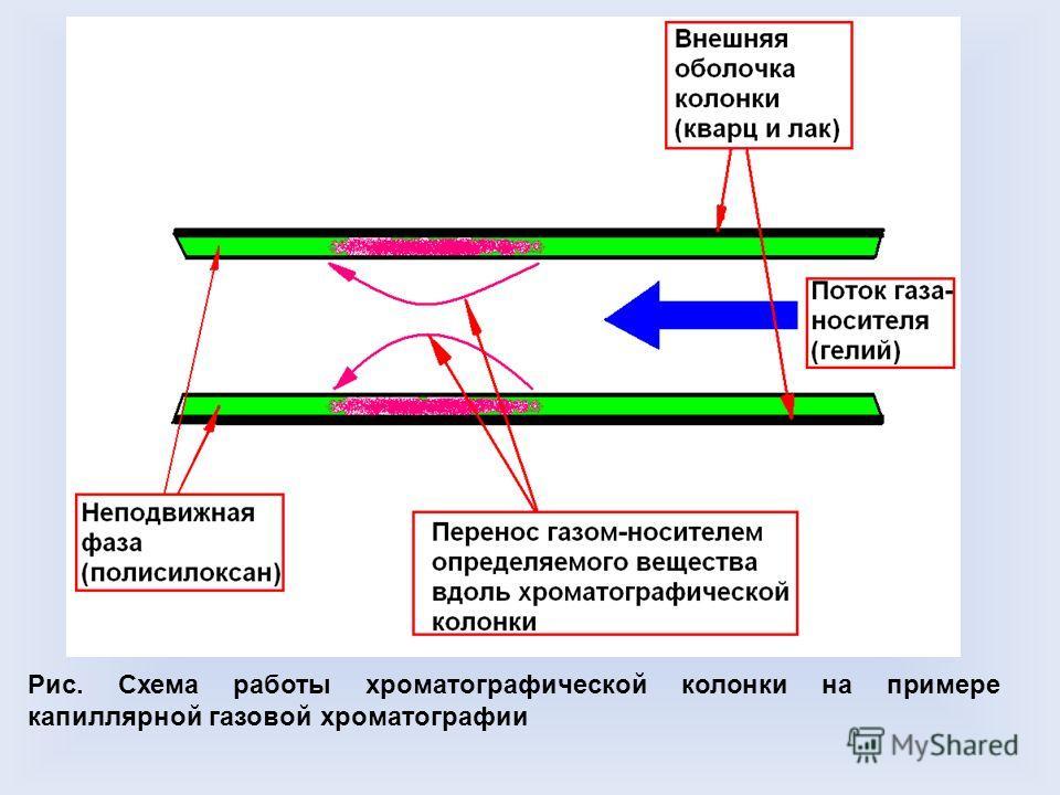 Рис. Схема работы хроматографической колонки на примере капиллярной газовой хроматографии