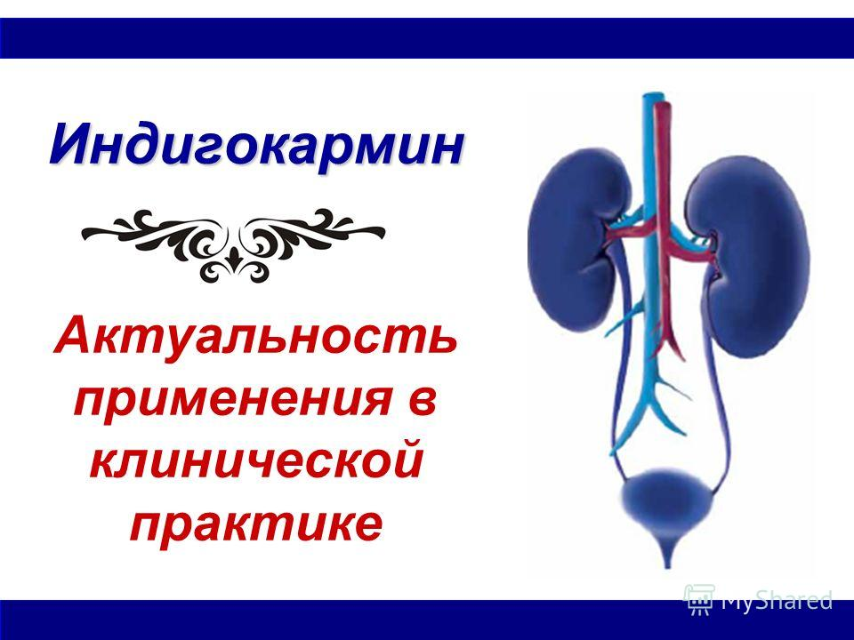 Индигокармин Индигокармин Актуальность применения в клинической практике