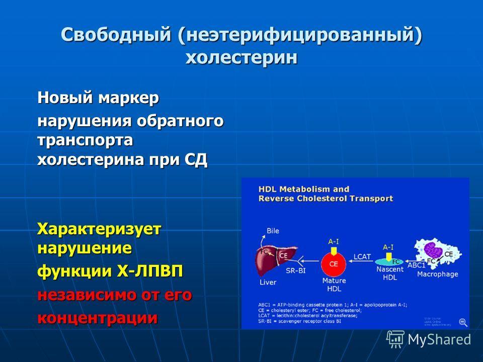 Свободный (неэтерифицированный) холестерин Новый маркер нарушения обратного транспорта холестерина при СД Характеризует нарушение функции Х-ЛПВП независимо от его концентрации