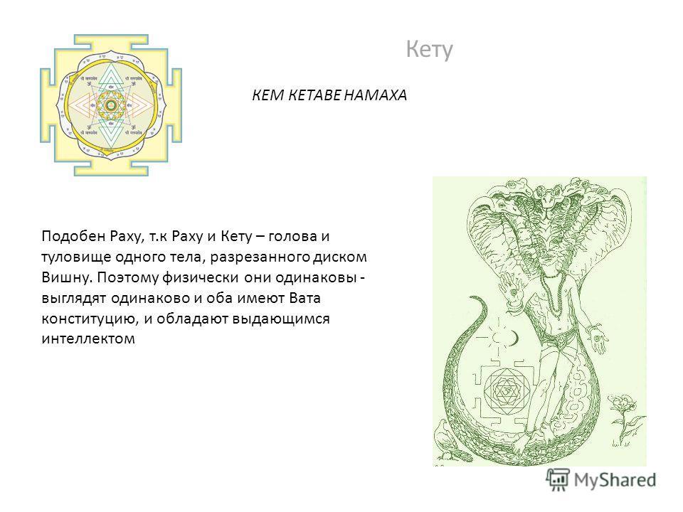 Кету КЕМ КЕТАВЕ НАМАХА Подобен Раху, т.к Раху и Кету – голова и туловище одного тела, разрезанного диском Вишну. Поэтому физически они одинаковы - выглядят одинаково и оба имеют Вата конституцию, и обладают выдающимся интеллектом