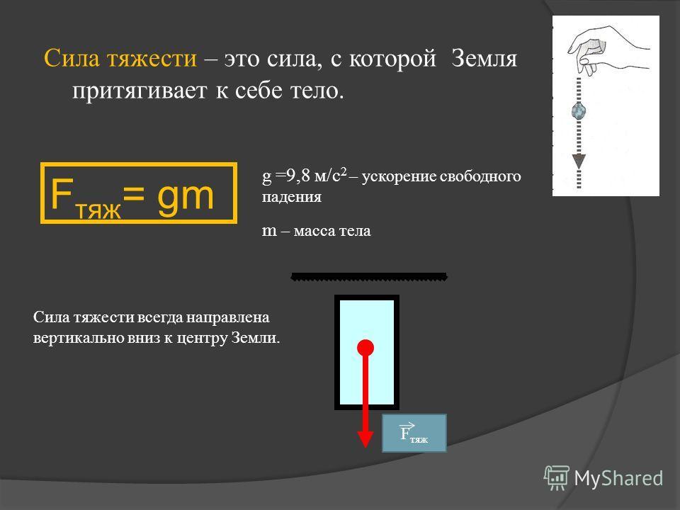 Сила тяжести – это сила, с которой Земля притягивает к себе тело. F тяж = gm g =9,8 м/с 2 – ускорение свободного падения m – масса тела Сила тяжести всегда направлена вертикально вниз к центру Земли. F тяж