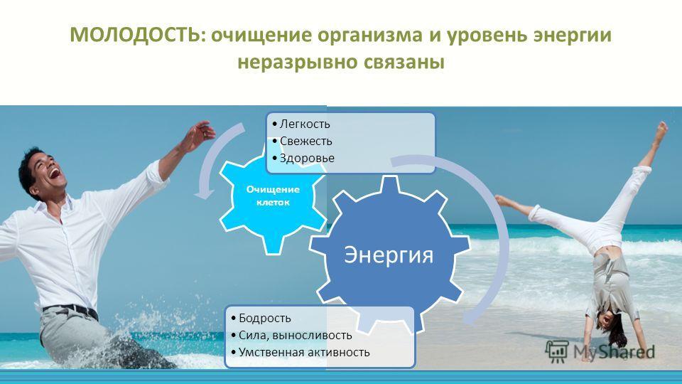 МОЛОДОСТЬ: очищение организма и уровень энергии неразрывно связаны Энергия Бодрость Сила, выносливость Умственная активность Очищение клеток Легкость Свежесть Здоровье 6