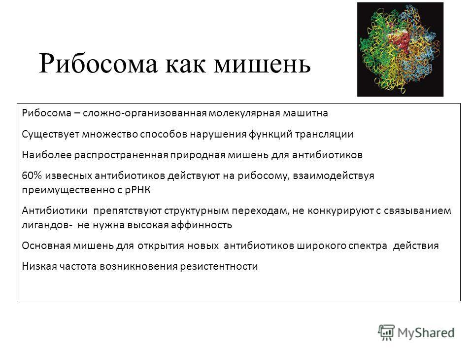 Рибосома как мишень Рибосома – сложно-организованная молекулярная машитна Существует множество способов нарушения функций трансляции Наиболее распространенная природная мишень для антибиотиков 60% извесных антибиотиков действуют на рибосому, взаимоде
