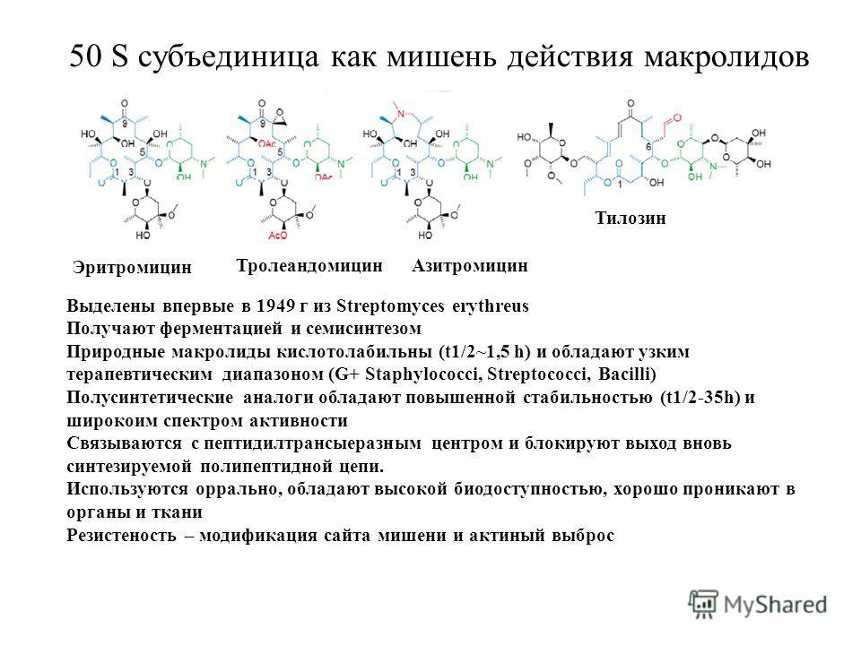50 S субъединица как мишень действия макролидов Эритромицин ТролеандомицинАзитромицин Тилозин Выделены впервые в 1949 г из Streptomyces erythreus Получают ферментацией и семисинтезом Природные макролиды кислотолабильны (t1/2~1,5 h) и обладают узким т
