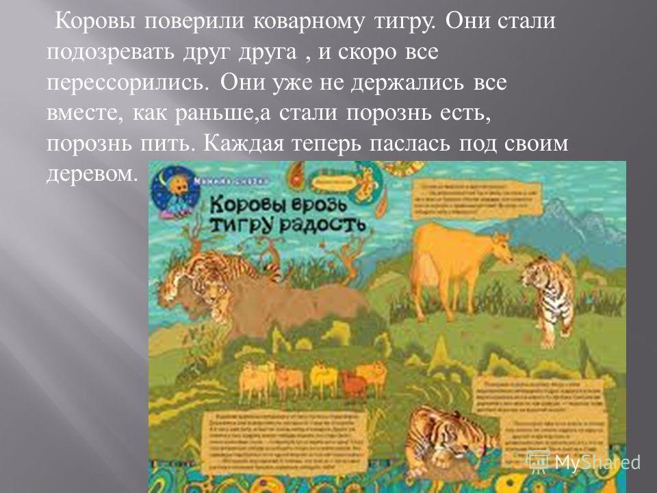 Коровы поверили коварному тигру. Они стали подозревать друг друга, и скоро все перессорились. Они уже не держались все вместе, как раньше, а стали порознь есть, порознь пить. Каждая теперь паслась под своим деревом.
