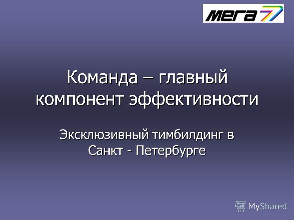 Команда – главный компонент эффективности Эксклюзивный тимбилдинг в Санкт - Петербурге