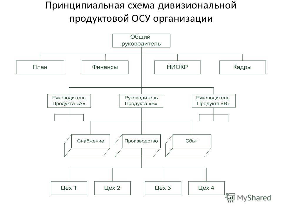 Принципиальная схема дивизиональной продуктовой ОСУ организации
