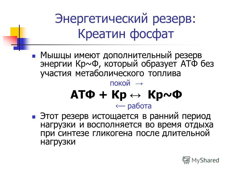 Энергетический резерв: Креатин фосфат Мышцы имеют дополнительный резерв энергии Кр~Ф, который образует АТФ без участия метаболического топлива покой АТФ + Кр Кр~Ф работа Этот резерв истощается в ранний период нагрузки и восполняется во время отдыха п
