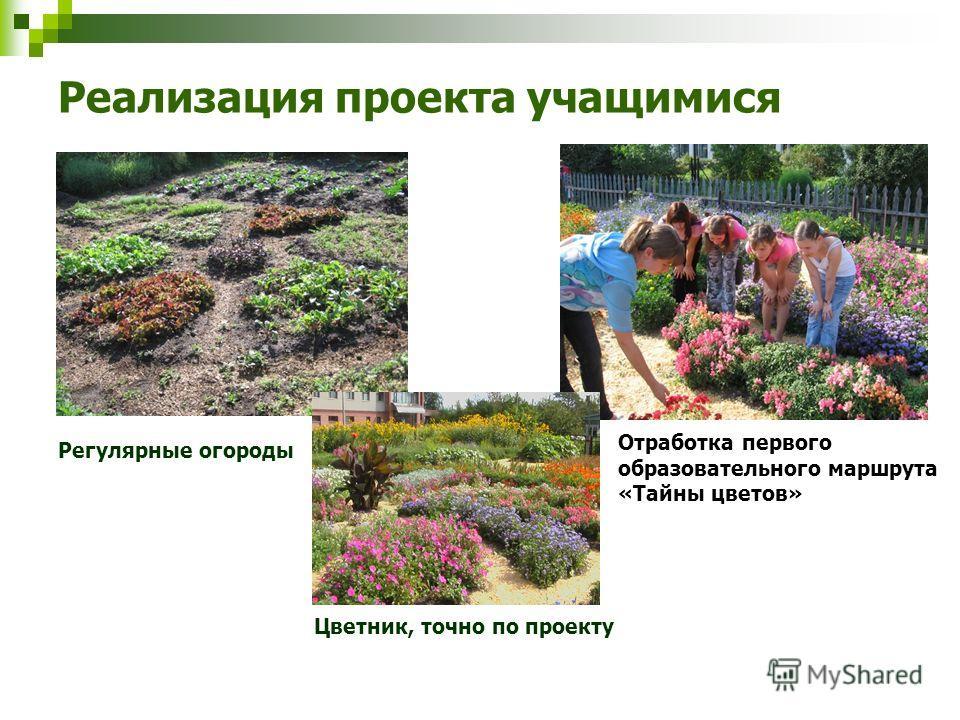 Реализация проекта учащимися Регулярные огороды Отработка первого образовательного маршрута «Тайны цветов» Цветник, точно по проекту